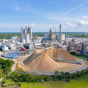 Woodchip exports continue to fade: down 32% year-ended November